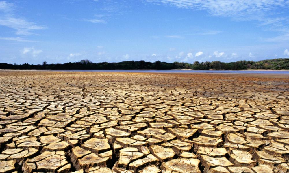 El impacto del cambio climático en Latinoamérica | WWF