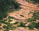 Gold mining is a growing threat for the Amazon. The issue will be discussed in a side event at Rio+20 summit.