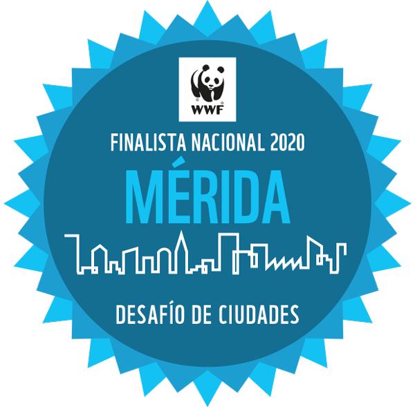 Mérida, finalista nacional 2020